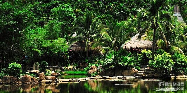 海南三亚呀诺达热带雨林文化旅游区