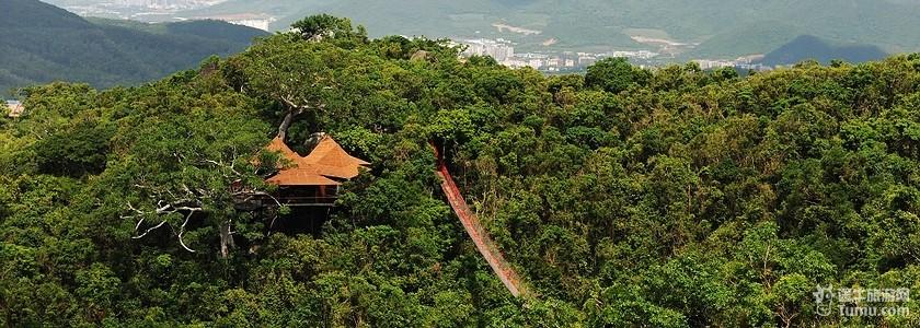 【图】热带天堂森林公园